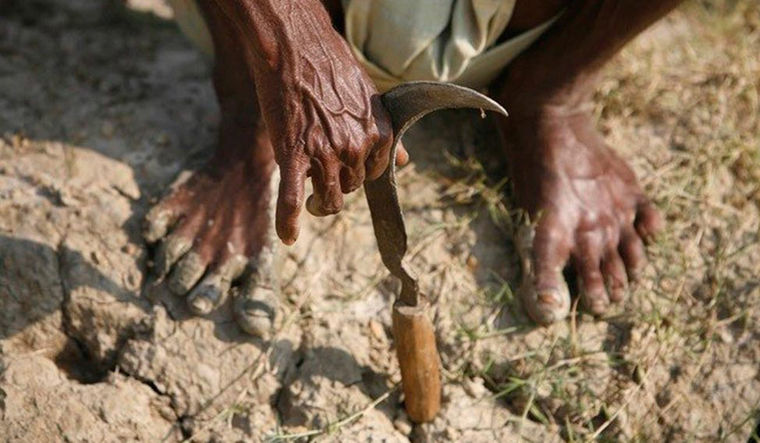 Gujarat: Two farmers commit suicide; eight cases in two months